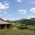 T.R.A.V.S.S. Società Agricola di Vagni Simone e Avanzi Nanda