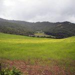 Azienda Agricola Biologica Moretti Geltrude