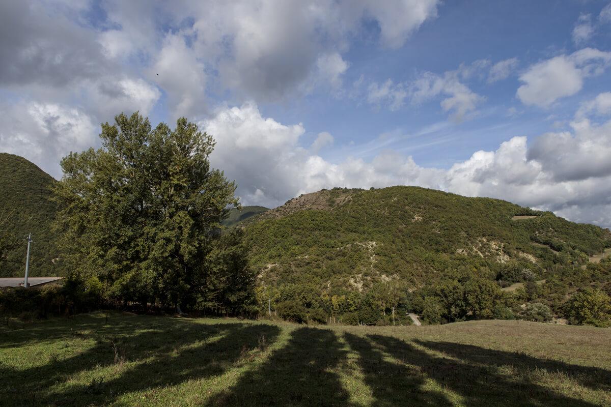Azienda Agricola Giovanni Angeli - paesaggio